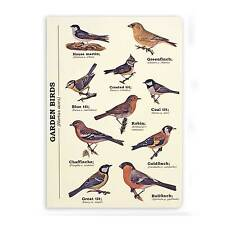 Garden Birds A5 Notebook from the Ecologie Hortus Aves Range by Gift Republic