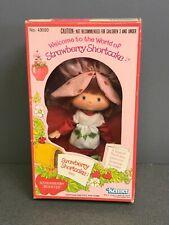 Strawberry Shortcake Doll Kenner 1980 Mib sealed