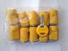 SCHWARZ LATCH PLUG Cylinder Lock, 19 mil, (Pack of 10 Locks & One Key)