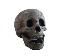 Fire Brick Ceramic Skull - Aged Gray