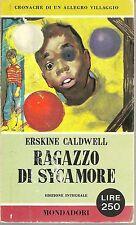 RAGAZZO DI SYCAMORE - ERSKINE CALDWELL   Ediz. I Libri del Pavone 1960