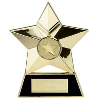 Star award Plaque, Cast Metal School Trophy. Star of the week, Free engraving