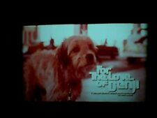 """16mm Feature Film """"For the Love of Benji"""" 1977 A Scope color fade 50%"""