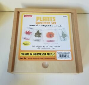 Lakeshore Learning Plants Specimen Set Encased in Unbreakable Acrylic