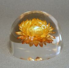 Acrylic Encased Straw Flower Paperweight
