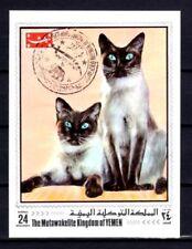 Chats Yémen (18) bloc oblitéré