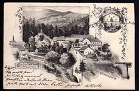 71525 AK Spiegelau Pension 1899 Künstlerkarte