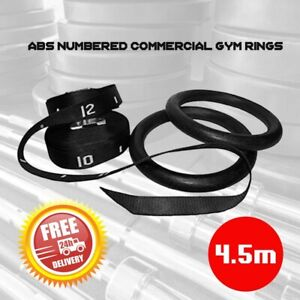 ABS Gymnastics Gym Rings with Numbered Strap Commercial Training