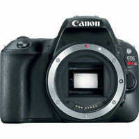 Canon EOS Rebel SL2 DSLR Camera (Black, Body Only)
