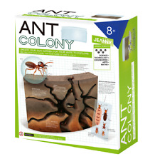 Ant Colony Terrarium Kit Arts and Crafts for Kids Ages 8-12 Boys and Girls. DIY