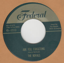 70'S DOO-WOP REPRO:  THE ROYALS-Are You Forgetting/What Did I Do  FEDERAL