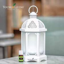 Young Living Lantern Diffuser New Sealed with Free Oils