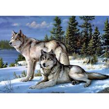 5D DIY Full Drill Diamond Painting Quiet Wolves Cross Stitch Embroidery Kit