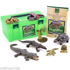 Three-dimensional picture book Real Figure box reptile Colorata