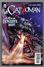CATWOMAN #20 - RAFA SANDOVAL ART COVER - DC's THE NEW 52 - 2013