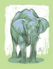 Federico Bertolucci    - stampa  Elefante - numerata e firmata