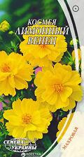 "Organic Flower seeds Cosmos ""Lime Venets"" Terry (Cosmos sulphureus) from Ukraine"