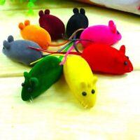 Kleine Mäusequietschgeräusch-Ton-Trend-Ratte  Spielwaren für Katzen-Hunde spielt