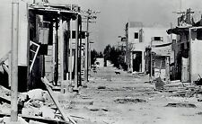 1971 Wire Photo orphan dogs roam Egypt ghost town after Israeli forces evacuated