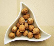 Muskatnüsse 25 Stück Muskatnuss Muskat Madagaskar 80/85er, 1a Qualität,