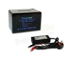 12Ah LiFePo4 Battery Rechargeable 12.8V Lithium Iron Phosphate 12V with Charger
