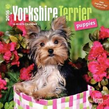 Yorkshire Terrier Puppies 2016 Mini Wall 9781465042477 (Paperback, 2015)