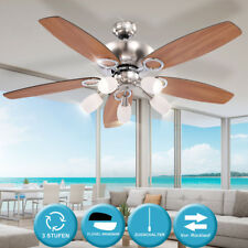 Ceiling Fan with Lighting and Pull Switches Ventilator Lamp Light Metal
