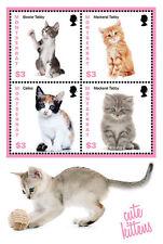 Montserrat - 2013 Cute Kittens On Stamps - Sheet of 4 -  MNH