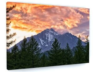 STUNNING MOUNTAIN FOREST SUNSET CANVAS PICTURE PRINT WALL ART 6330