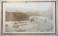 Orig Fotografie Albumin Schlossgärtnerei Rottwerndorf Pirna um 1900 Photografie