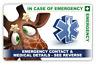 Emergency ICE Card - Fun Giraffe Design Card & 2 Keyrings