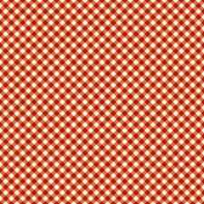 THE MAGIC OF OZ FABRIC RED GINGHAM FABRIC WILMINGTON PRINTS FABRIC BTY NEW