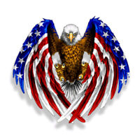 Bald Eagle USA American Flag Sticker Car Auto Laptop Window Decal Bumper Cooler