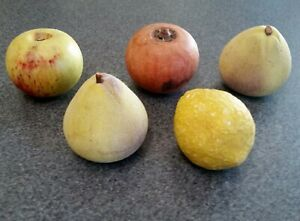 Lot of 5 Vintage Italian Marble Fruits - Pomegranate, Lemon, Apple, 2 Pears