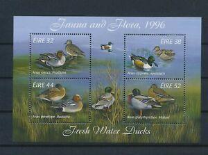 LO56652 Ireland 1996 animals fauna flora birds good sheet MNH