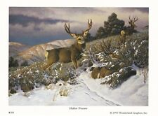 Hidden Treasure by Tom Mansanarez Deer Print 7x5