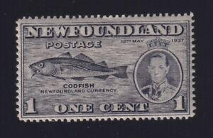 "Newfoundland Sc #233i (1937) 1c Coronation ""Fish Hook Variety"" Mint VF NH MNH"