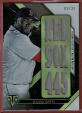 David Ortiz 2016 Topps Triple Threads Relic Card # /36 Red Sox 445