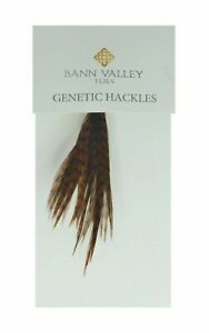 Metz Genetic Hackles Cock Neck Grizzle Dyed Chocolate Average Sizes 12-8s
