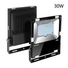 30W Led Flood Light IP65 Waterproof Outdoor Security Light Fixture