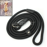 Correa Leash Cuerda de Nylon para Perro Cachorro Perro Mascota Adiestramiento