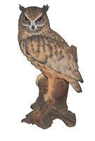 Vivid Arts - REAL LIFE BIRDS - Large Long Eared Owl