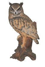 Vivid Arts - REAL LIFE BIRDS - Large Long Eared Owl
