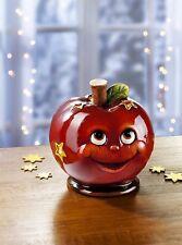 Windlicht Apfel mit Sterne Teelichthalter Kerzenhalter Weihnachten XMAS