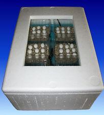 105) Reptilien-Inkubator-Brutkasten-Brutapparat-Brutmaschine-Incubator-Vernebler