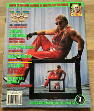 WWF/WWE Magazine February 1994 Shawn Michaels cover HASBRO Inc Doink POSTER