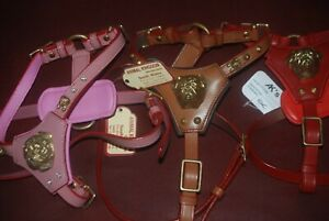 NEW LEATHER- PUG/JUG- DOG HARNESS AND LEAD TO MATCH 3-COLOURS WITH 3D BRASS HEAD