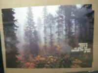 PATIENCE THERE IS NO SHORT CUT ECOLOGY VINTAGE POSTER GARAGE 1970'S CNG1831