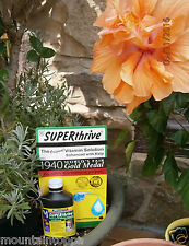 The Original Superthrive Vitamin Solution enhanced with Kelp 4 Fl. oz /120Ml