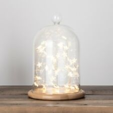 Glass Bell Jar Dome with 40 Micro Warm White LED Star Battery Fairy Lights
